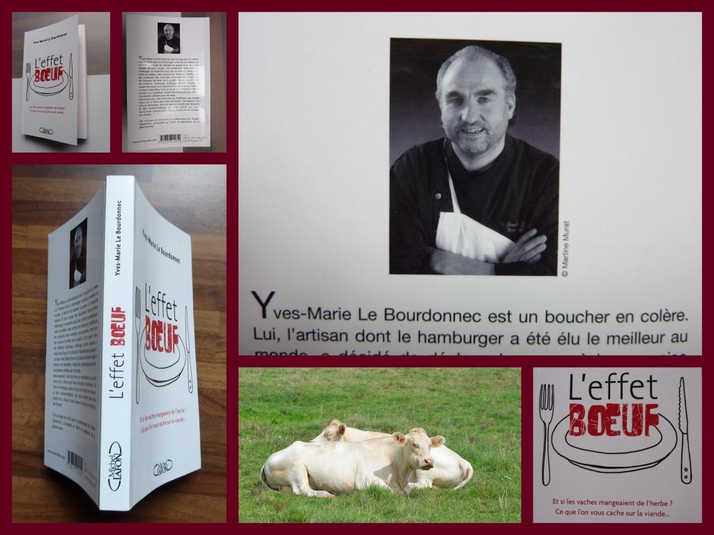 L'Effet Boeuf Yves-Marie Le Bourdonnec