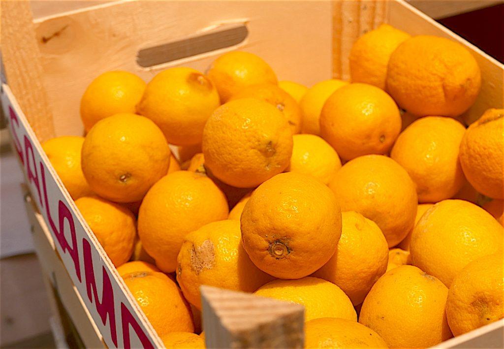Citrons de Sicile à La Récolte
