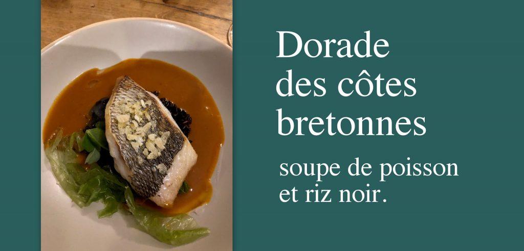 Dorade des côtes bretonnes