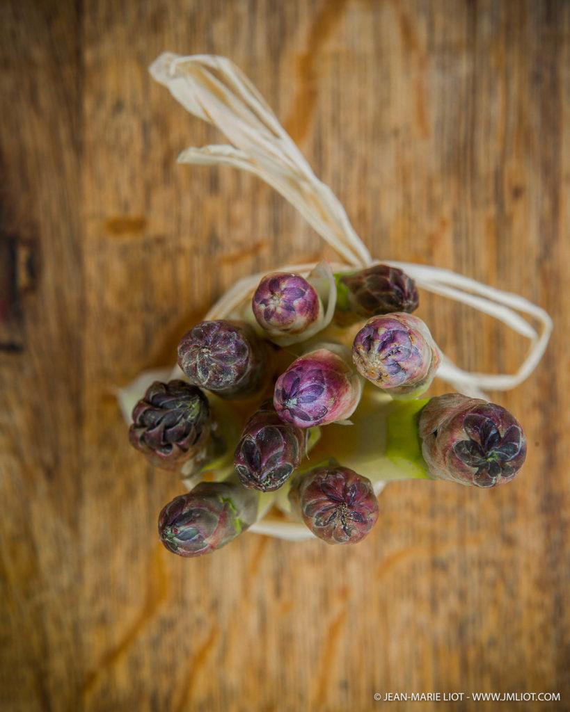 Belles asperges photographiées par JM Liot